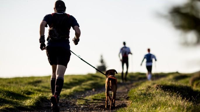 Cachorro-e-homem-correndo-em-uma-trilha_fellipevasconcellos