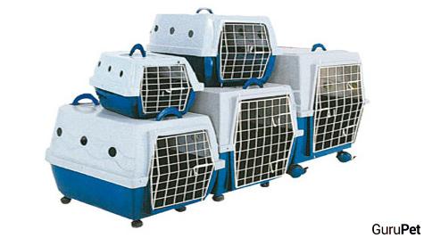 Caixas-de-transporte-para-viajar-com-o-cachorro_fellipevasconcellos